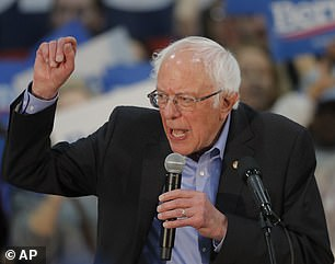 Pictured: Bernie Sanders