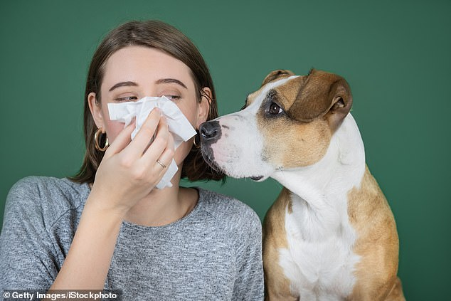 According to the World Health Organisation, there's no evidence at present that dogs or cats can be infected with coronavirus