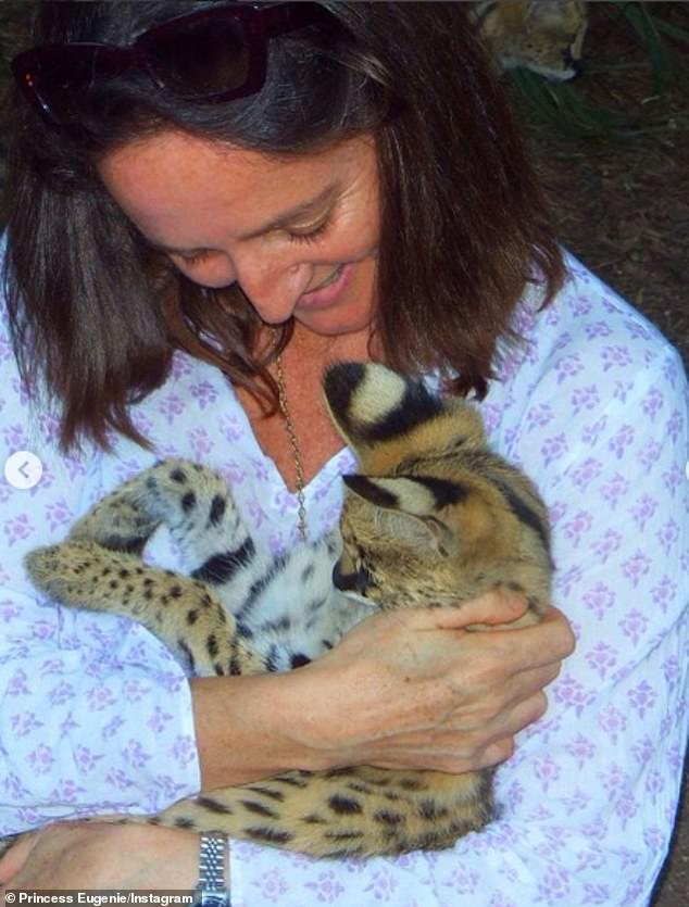Another snap captures two ferrets cheekily climbing up her clothes, while a third sees her aunt holding a serval wild cat