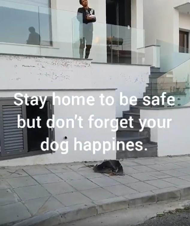 Demetriou piloted the drone from a small balcony in his home while the dog walked back and forth on the deserted street outside, with the drone following behind holding the leash