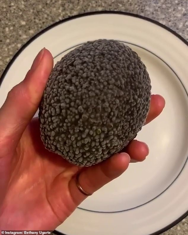 Notorious for being ill-timed in their ripening, Bethany was determined to use her avocado for cooking after freezing it in time 121 days ago (pictured)