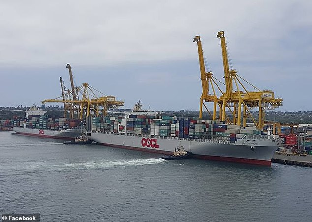 OOCL Shanghai and OOCL Yokohama alongside Sydney Container terminal in 2016. The Shanghai is expected to dock again at Sydney on Friday