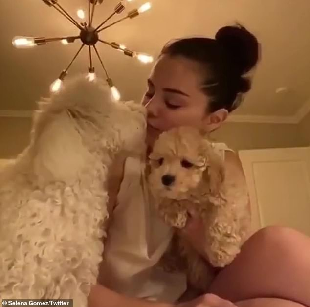 First pup:Selena previously adopted her dog Winnie back in fall 2019