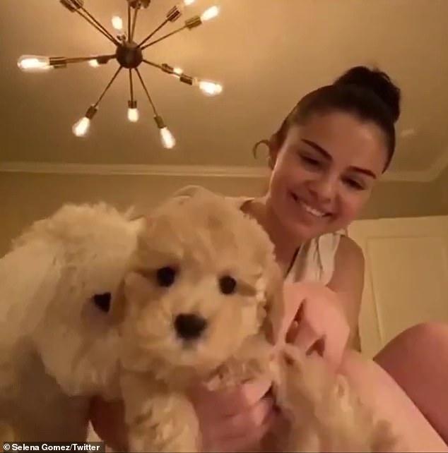 Daisy: She showed her 172 million followers her new puppy Daisy