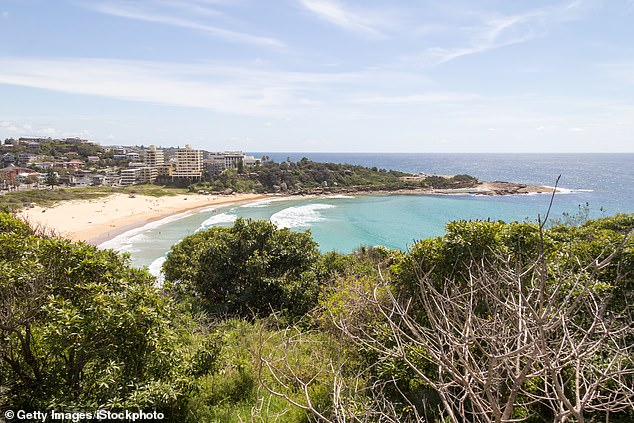 Sydney's northern beaches is in the top five areas for infections in New South Wales with 68 recorded coronavirus cases