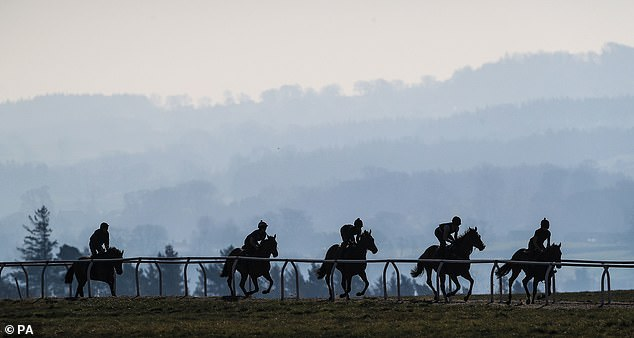 The British Horseracing Authority (BHA) ordered the investigation in February