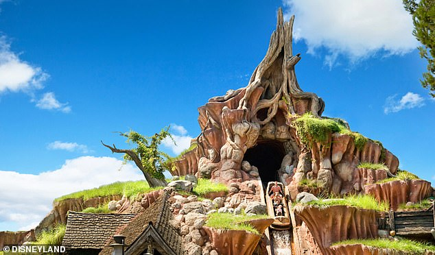 Wishing they were there: The real Splash Mountain is one of Disney's most iconic rides