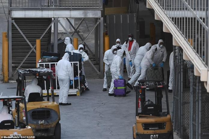 The group dressed in hazardous materials was photographed preparing the bags for disinfection before their return to their country of origin