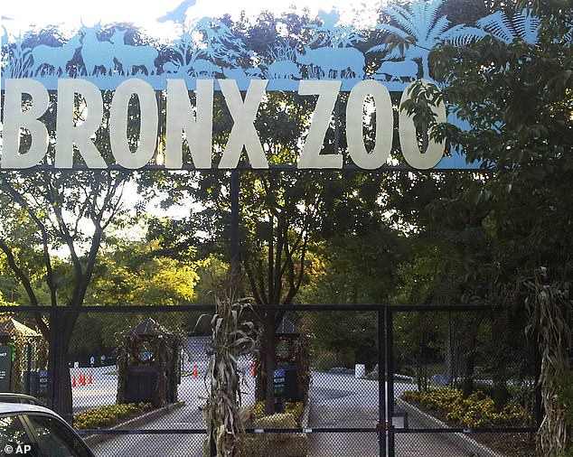 Bronx Zoo (photo) has been temporarily closed since March 16
