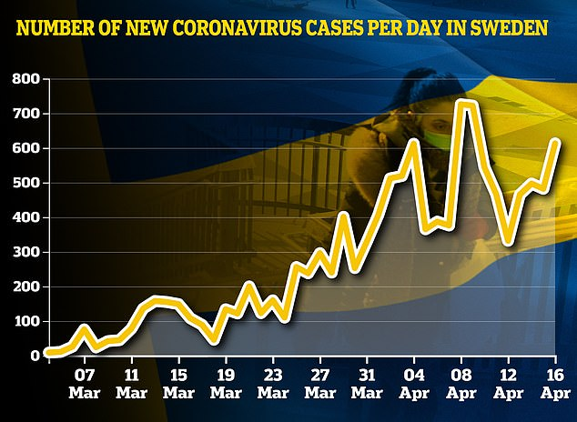 This graph shows the daily number of cases registered in Sweden. Today's figure of 613 was a large increase from 482 yesterday