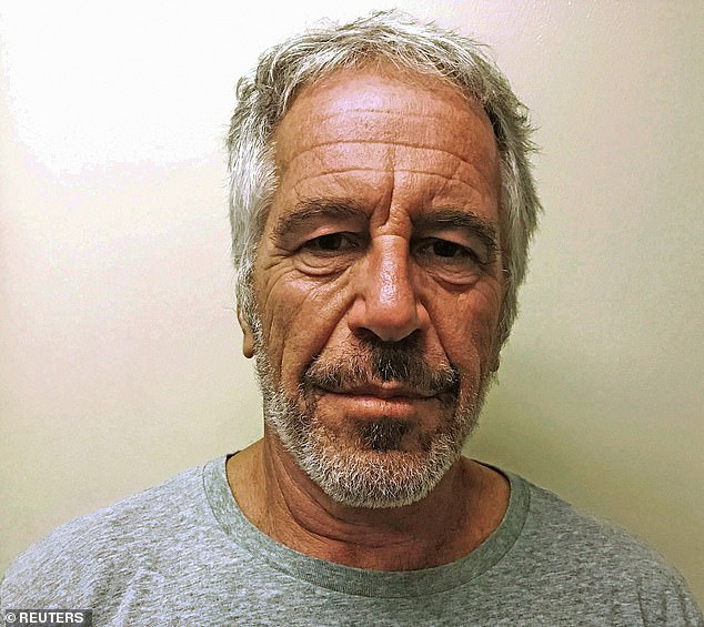 Bushnell also knows of women who had affairs with convicted rapist Jeffrey Epstein (above)