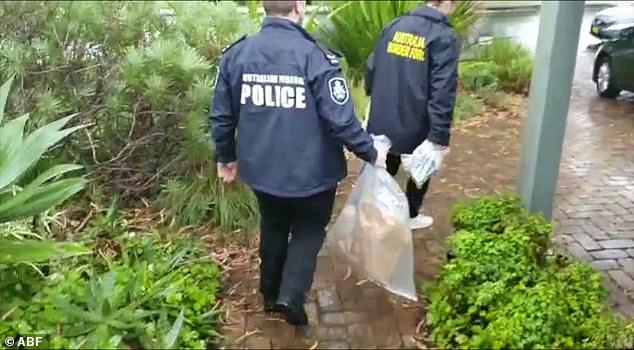 Police remove a child sex doll from a property after raids on three homes in Turramurra and Grafton last week