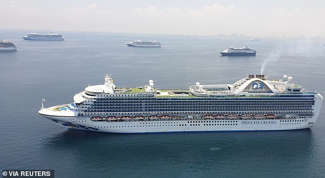 A number of cruise ships are photos waiting at sea in the Philippines