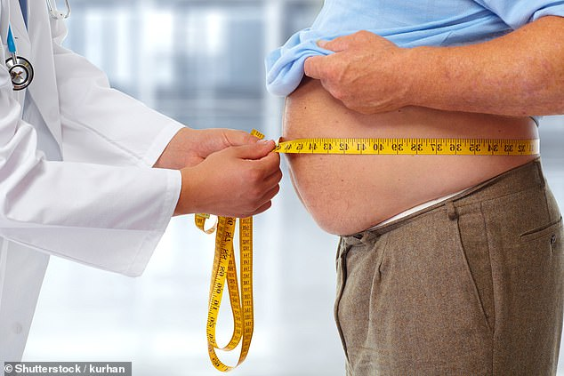 Overweight people have been shown to have higher levels of inflammatory messenger molecules called cytokines. (Stock Image)