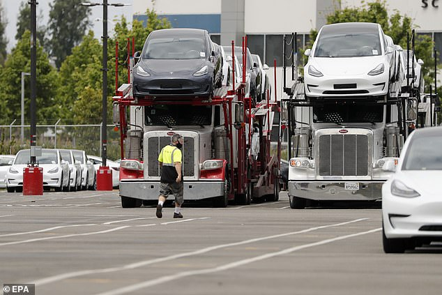 Operations at the plant started again after being shut down on March 23 as the county implemented measures to slow the coronavirus. Pictured: A man walks toward semi-trucks loaded with Tesla cars