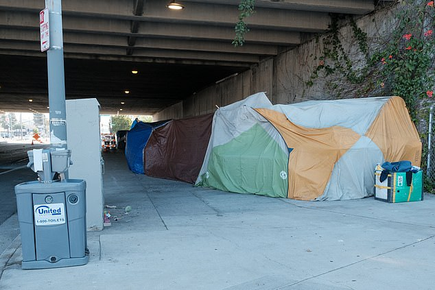 The injunction was issued in a lawsuit filed by the LA Alliance for Human Rights, which accused officials in greater Los Angeles of failing to comprehensively address the homelessness crisis