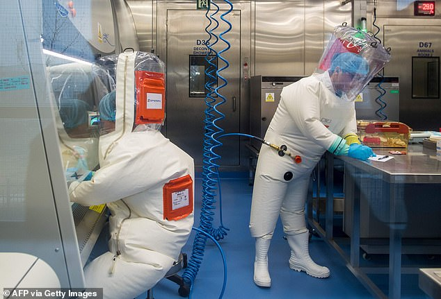 A team of scientists has produced evidence that the pandemic virus is