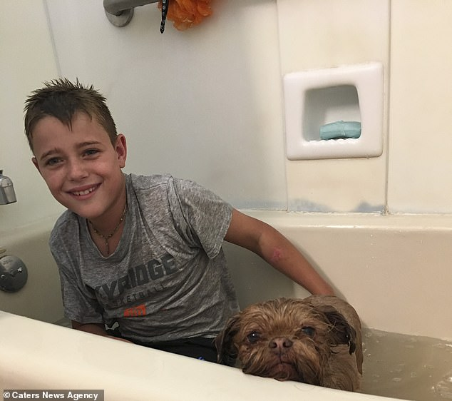 The little pooch is very close with Cody and Candice's son Gunner, and sleeps on his bed every night (pictured together at bathtime)