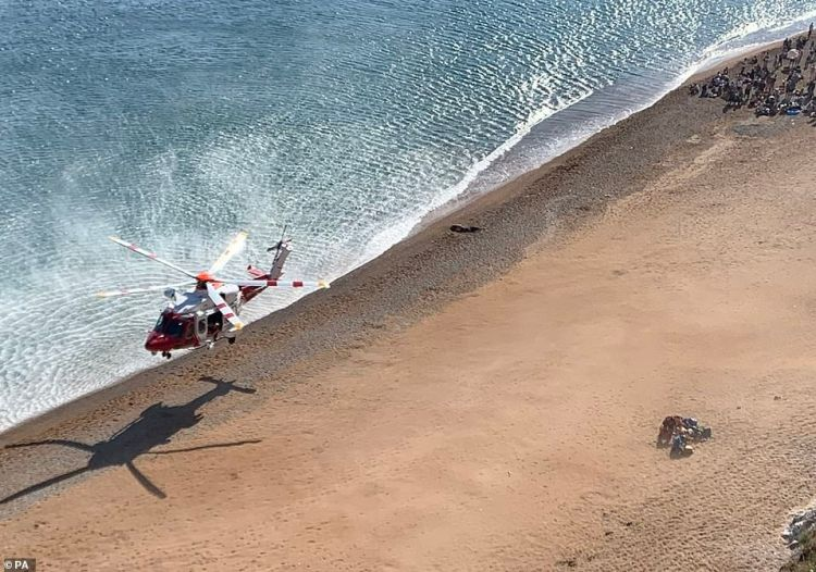 Pictured: The air ambulance helicopter touches down at Durdle Door on Saturday afternoon before the council today closed the beauty spot due to injuries
