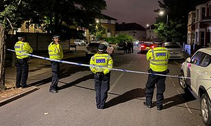 Four people including a young child are shot in London | Daily ...