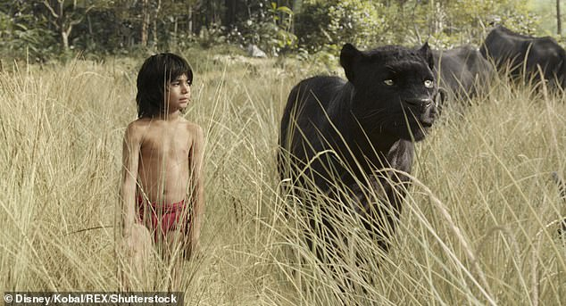 The live remake of The Jungle Book 2016 was also accompanied by a warning (photo)