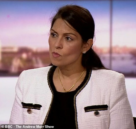 Interior Minister Priti Patel said this morning on Andrew Marr: