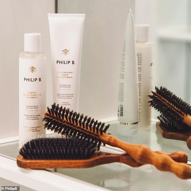 Mr B said the easiest ¿ and cheapest - way to fix hair with oily roots and dry, brittle ends is to brush it regularly with a natural bristle and nylon combination brush (pictured)