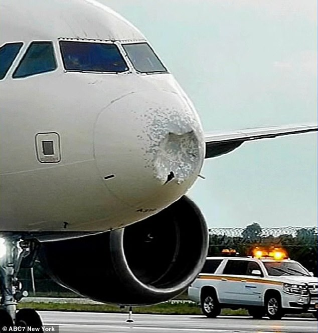 After the safe landing, ABC7 filmed vision of the plane on the tarmac, which showed its front cone completely pushed in.