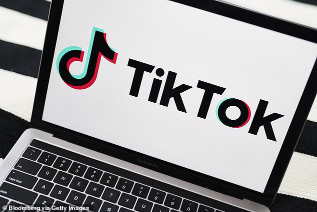 Leaked police documents show that TikTok sometimes provides law enforcement with information about its users, including their phone numbers, Facebook ID, other linked social media accounts, and specific phone model used