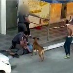 Two Brazilian police officers will face criminal charges after violent arrest