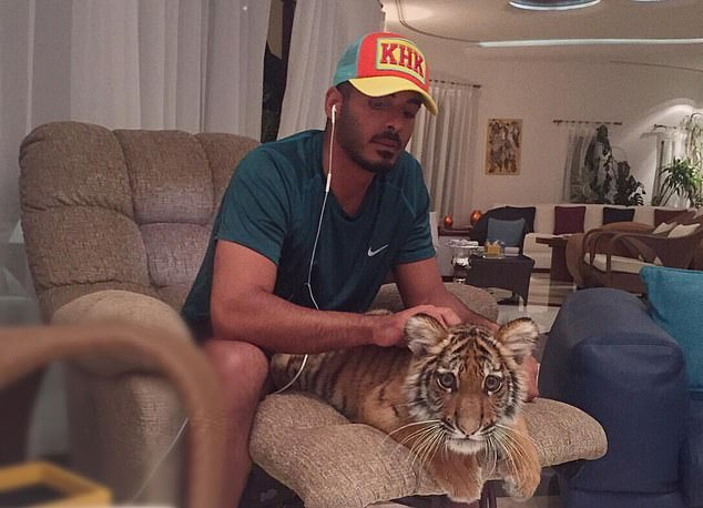 Sheikh Khalifa bin Hamad bin Khalifa Al Thani (pictured in a cap emblazoned with his initials, with a tiger cub), 28, the son of Qatar's Emir, enjoyed an exuberant lifestyle while studying in LA for four years from 2011
