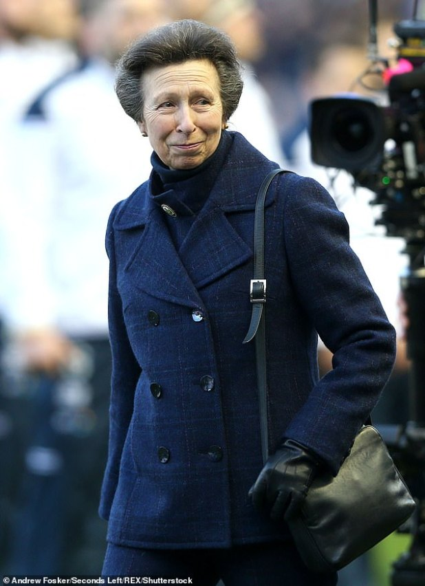 Princess Anne has sympathy for Prince, Harry, 35, and Meghan Markle, 38, because 'new, young, glamorous royals' face 'pressure', according to a royal expert