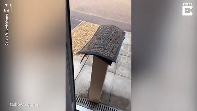 Residents left laughing after postman leaves parcel 'under doormat'