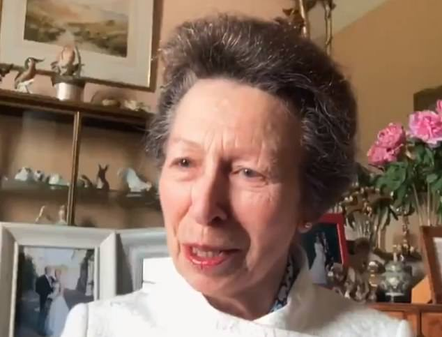Her Majesty hosted a secret and socially distant lunch with her daughter, Princess Anne (file image)