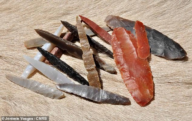 Pictured, atone fluted points dating back 8,000 years ago which were discovered on archaeological sites in Manayzah, Yemen and Ad-Dahariz, Oman. Until now, the prehistoric technique of fluting had been uncovered only on 13,000 year-old Native American sites