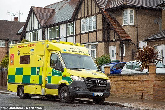 NHS clinical director Dr Cliff Mann says GPs, nurses and paramedics have already played a key role in helping millions access the right medical care during the lockdown. Officials say no one who shows up to A&E will be turned away - but they want people to call NHS 111 first (stock photo)