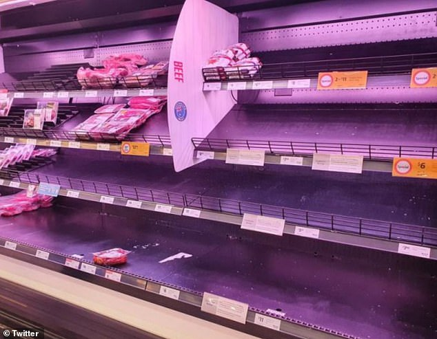 Under the lockdown, business are divided into three categories - essential ones that operate as normal, ones that must slash shifts and output, and those that must close - sparking panic-buying and concerns of a national food shortage. Pictured: Empty shelves at Coles