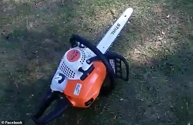 One of the chainsaws is seen resting on the ground during the arrest