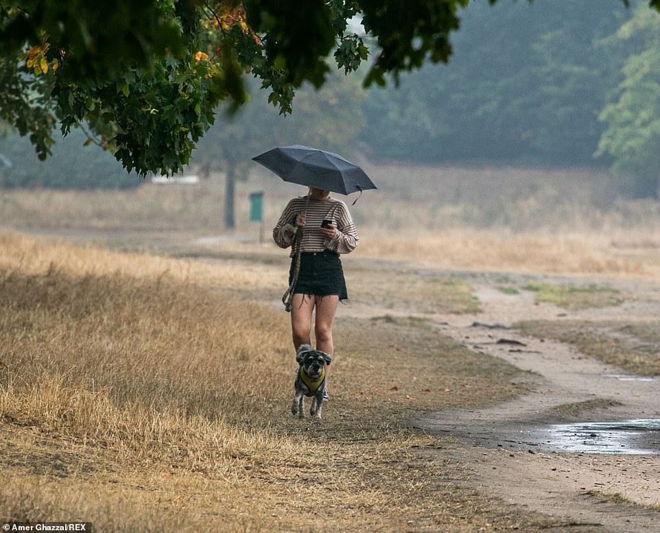 People sheltering under umbrellas from the rain on Wimbledon Common on Thursday after many days of high temperatures. The forecast is for cooler weather with thunderstorm warnings and flash floods