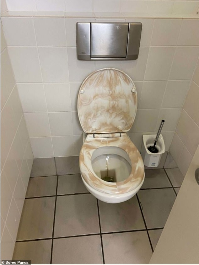 And what may have initially seemed a good idea turned rather more revolting, when the design for this brown toilet seat, thought to be in the US, turned into what resembled a messy incident
