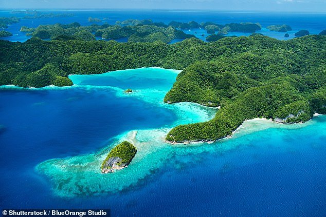 Aviation expert Neil Hansford predicts the Pacific Islands (Palau tropical islands pictured) will be the second destination to open to Australians