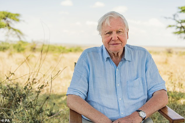 Sir David Attenborough has said we need to 'rewild the planet' and switch to a vegetarian diet in order to save the Earth. He was speaking ahead of his new Netflix documentary film