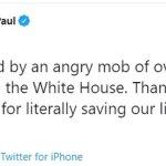 Trump calls BLM mob who attacked Sen. Rand Paul 'thugs' at New Hampshire rally