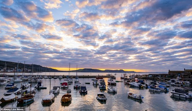 A glorious sunrise is seen rising over the Cobb ner Lyme Regis this morning as boats bob gently in the bay on the coldest late August bank holiday in 50 years