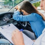Refugee driving instructor pocketed $450 to let a student pass a test when they should have failed