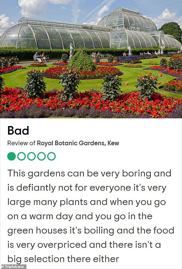 A planted review! Kew Gardens is one of the prettiest places in London with more than two million people visiting a year and more than 27,000 plants, but this reviewer said it 'wasn't enough'