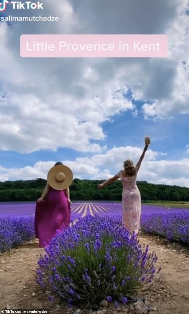 Visitors seeking a little flower power can find the striking fields of purple at Kent's Castle Farm, which is just outside London