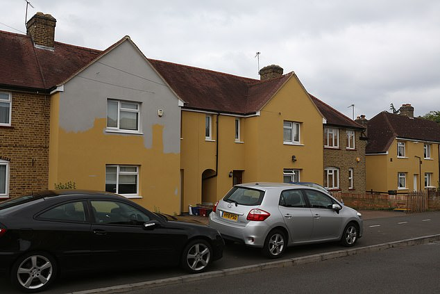 Hounslow Council has been labelled a 'bully' after painting council houses the colour of 'baby poo', and slapping a widow with a £1,600 fine for trying to paint over the colour