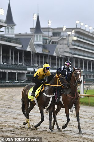 An exercise rider works Kentucky Derby entry King Guillermo at Churchill Downs on Wednesday. The three-year-old colt, who is owned by former major leaguer Victor Martinez, showed a fever on Wednesday and was scratched from the race on Thursday