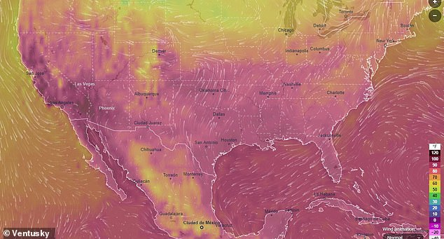 Around 43 million Americans are under an excessive heat watch and have been told to stay indoors as record-high temperatures are expected to hit the West Coast for Labor Day weekend